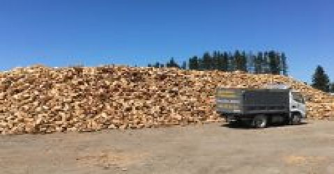 Needmore Firewood N Tree Services Limited